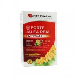 Forte Jalea Real Energía+